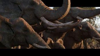 The Lion King - Alternate Trailer 64
