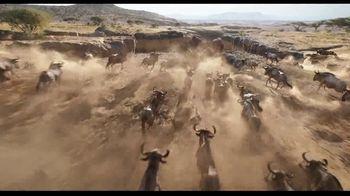 The Lion King - Alternate Trailer 35