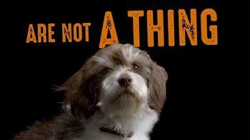 Crave Pet Food TV Spot, 'Vegan Pets Are Not A Thing' Song by Biker Bar - Thumbnail 4