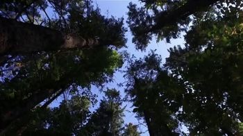 National Forest Foundation National Forest Week TV Spot, 'One Small Act'