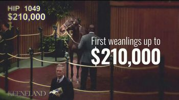 Coolmore America TV Spot, 'Air Force Blue' - Thumbnail 5