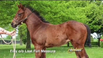 Claiborne Farm TV Spot, 'Mastery's First Crop' - Thumbnail 10