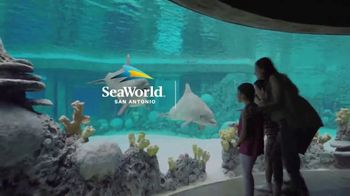 SeaWorld Summer Sale TV Spot, 'Real Feels Amazing' - Thumbnail 8
