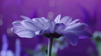 Vicks ZzzQuil Pure Zzzs Liquid Melatonin Sleep-Aid TV Spot, 'Unique Botanical Blend' - Thumbnail 1