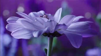 Vicks ZzzQuil Pure Zzzs Liquid Melatonin Sleep-Aid TV Spot, 'Unique Botanical Blend' - Thumbnail 2