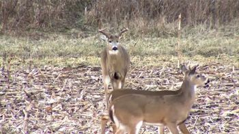 Wildlife Research Center Super Charged Scent Killer TV Spot, 'Deer Noses' - Thumbnail 2
