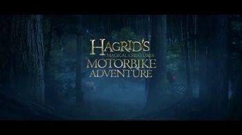 Wizarding World of Harry Potter TV Spot, 'Hagrid's Magical Motorbike Adventure: abierto ya' [Spanish] - Thumbnail 6