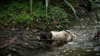 Dirty Dog Bag TV Spot, 'Big Mess' - Thumbnail 1