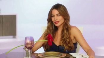 Rooms to Go TV Spot, 'Love Comes at a Price' Featuring Sofia Vergara - 1 commercial airings