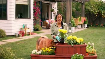 Zyrtec TV Spot, 'ABC: He Loves Me, He Loves Me Not' Featuring Rachel Lindsay - Thumbnail 2