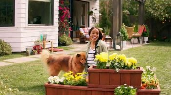 Zyrtec TV Spot, \'ABC: He Loves Me, He Loves Me Not\' Featuring Rachel Lindsay