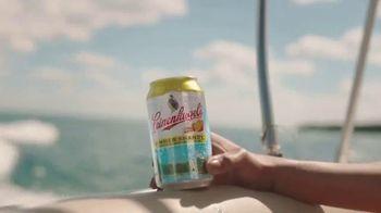 Leinenkugel's Summer Shandy TV Spot, 'Out of Office' - Thumbnail 1