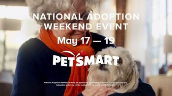 PetSmart National Adoption Weekend Event TV Spot, 'Adoption Love Story' - Thumbnail 5