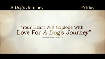 A Dog's Journey - Alternate Trailer 18