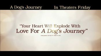A Dog's Journey - Alternate Trailer 24