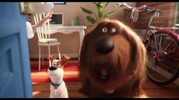 The Secret Life of Pets 2 - Alternate Trailer 39