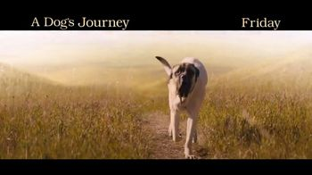 A Dog's Journey - Alternate Trailer 21