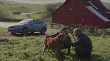 2019 Subaru Crosstrek TV Spot, 'Old Friends' Song by Erick Jordan [T2]