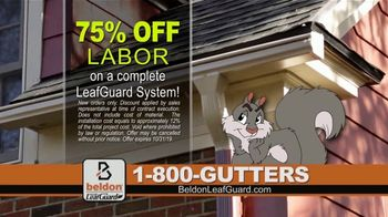 Beldon LeafGuard TV Spot, 'Snake: 75 Percent Off Labor' - Thumbnail 5