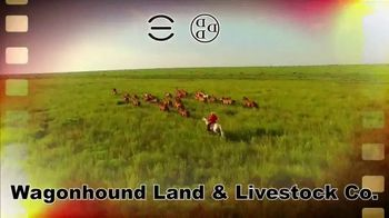 6666 Ranch Return to the Remuda Sale TV Spot, 'Cowboy Tradition' - Thumbnail 5
