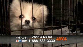 ASPCA TV Spot, 'Family' Song by Mina Tank - Thumbnail 5