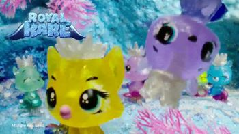 Hatchimals CollEGGtibles Season 6 The Royal Hatch TV Spot, 'Accesories in Every Egg' - Thumbnail 3