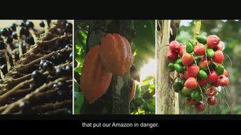 Visit Brasil TV Spot, 'Amazon Forest' - Thumbnail 10