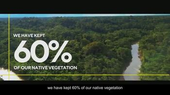 Visit Brasil TV Spot, 'Amazon Forest' - Thumbnail 6
