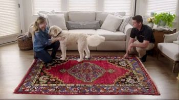 Stanley Steemer TV Spot, 'Area Rug Stories' - Thumbnail 8