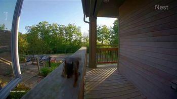 Google Nest Hub Max TV Spot, 'Animals' - Thumbnail 3