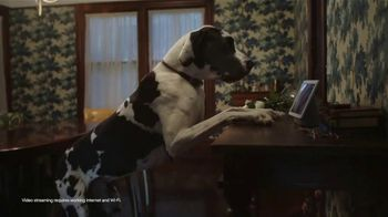 Google Nest Hub Max TV Spot, 'Animals' - 361 commercial airings