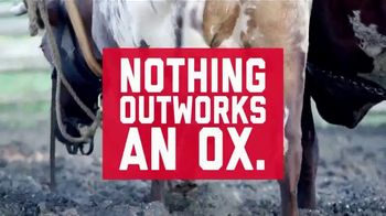 Tracker Off Road TV Spot, 'Ox Don't Care'