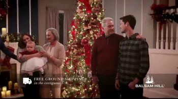 Balsam Hill TV Spot, 'Memory Keeper' - 1428 commercial airings