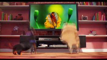 Progressive TV Spot, 'Secret Life of Pets 2: Protect Your Pets' - Thumbnail 2