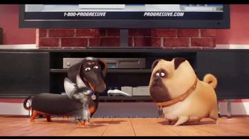 Progressive TV Spot, 'Secret Life of Pets 2: Protect Your Pets' - Thumbnail 5