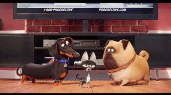 Progressive TV Spot, 'Secret Life of Pets 2: Protect Your Pets' - 5437 commercial airings