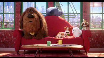 Progressive TV Spot, 'Secret Life of Pets 2: Protect Your Pets' - Thumbnail 7