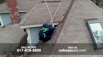 Bat Removal & Wildlife Exclusion Services thumbnail