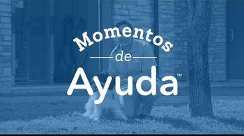 2019 Honda CR-V TV Spot, 'Dog Wheels' [Spanish] [T2]