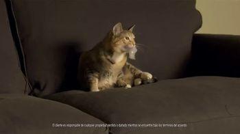 Rent-A-Center TV Spot, 'Las cosas pasan' [Spanish] - Thumbnail 1