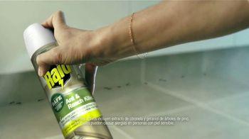 Raid Ant & Roach Killer TV Spot, 'No hay que elegir' [Spanish] - Thumbnail 3