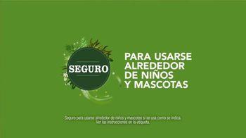 Raid Ant & Roach Killer TV Spot, 'No hay que elegir' [Spanish] - Thumbnail 5