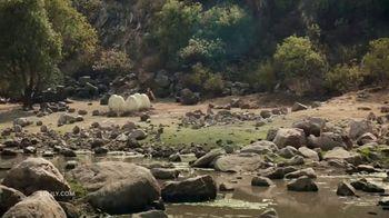 Zulily TV Spot, 'Nest: Handbag' - Thumbnail 1