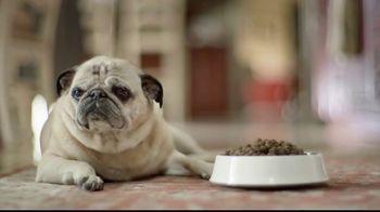 Freshpet Select TV Spot, 'Rudy the Picky Pug' - Thumbnail 4