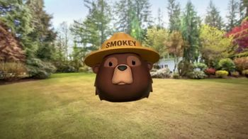 Smokey Bear Campaign TV Spot, 'Al Roker: Smokey Bear's 75th Birthday' - Thumbnail 4