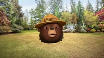 Smokey Bear Campaign TV Spot, 'Al Roker: Smokey Bear's 75th Birthday' - Thumbnail 5