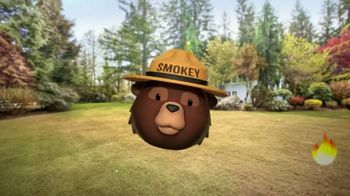 Smokey Bear Campaign TV Spot, 'Al Roker: Smokey Bear's 75th Birthday' - Thumbnail 9