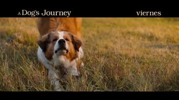 A Dog's Journey - Alternate Trailer 41
