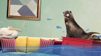 SERVPRO TV Spot, 'Animal Planet: Underwater Worlds' - Thumbnail 3