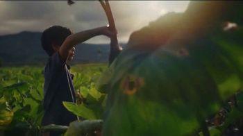 The Hawaiian Islands TV Spot, 'Hawaii Rooted: Seeds of Perseverance' - Thumbnail 3